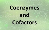 Coenzymes and cofactors