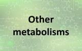 Other metabolisms